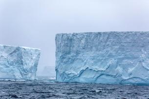 Huge tabular icebergs broken off from B-17A Iceberg near Cooper Bay, South Georgia Overseas Protectoの写真素材 [FYI03811493]