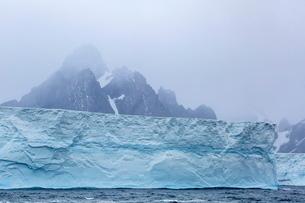 Huge tabular icebergs broken off from B-17A Iceberg near Cooper Bay, South Georgia Overseas Protectoの写真素材 [FYI03811498]