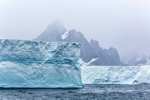 Huge tabular icebergs broken off from B-17A Iceberg near Cooper Bay, South Georgia Overseas Protectoの写真素材 [FYI03811503]