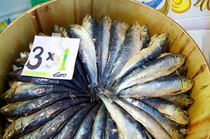 Sardines in Mercado Central (Central Market), Valenciaの写真素材 [FYI03811515]