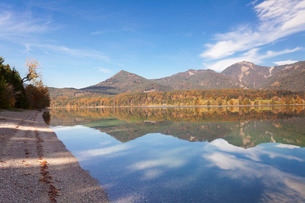 Herzogstand Mountain, Heimgarten Mountain reflecting in Walchnsee Lake in autumn, Bavarian Alps, Uppの写真素材 [FYI03811581]