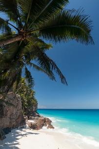 Anse Macquereau, Fregate Island, Seychellesn Oceanの写真素材 [FYI03811606]