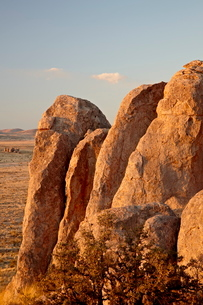 Boulders at sunset, City of Rocks State Park, New Mexico'の写真素材 [FYI03811832]