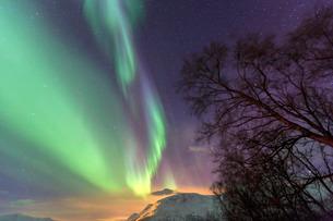Northern Lights on the icy landscape of Svensby, Lyngen Alps, Troms, Lapland, Norway, Scandinaviaの写真素材 [FYI03811898]