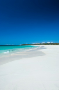 White sand beach and turquoise waters, Shelley Cove near Eagle Bay, Western Australiaの写真素材 [FYI03812101]