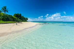 Little island with a white sand beach in Haapai, Haapai Islands, Tonga, South Pacificの写真素材 [FYI03812146]