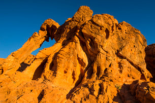 Redrock Sandstone formations at sunrise in the Valley of Fire State Park, Nevada'の写真素材 [FYI03812166]
