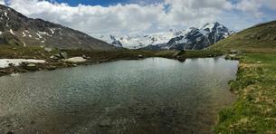 Glacier Forni and alpine lake, Valfurva, Lombardy, Italy, Europeの写真素材 [FYI03812300]