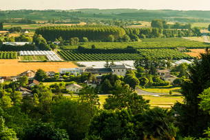 View of fields, orchards and polytunnels in summer seen from this important hilltop town, Duras, Lotの写真素材 [FYI03812311]