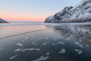 The pink light of sunrise over the waves of cold sea surrounded by snowy peaks, Ersfjord, Senja, Troの写真素材 [FYI03812392]