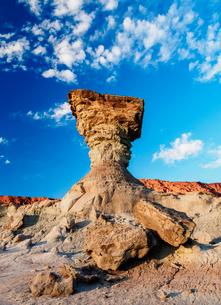 The Mushroom Rock Formation, Ischigualasto Provincial Park, UNESCO World Heritage Site, San Juan Proの写真素材 [FYI03812486]