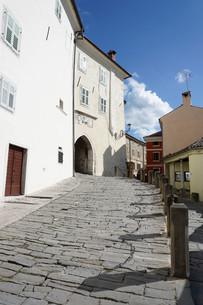 Hill village of Motovun, Istra Peninsula, Croatia, Europeの写真素材 [FYI03812521]