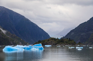 Blue icebergs and face of Sawyer Glacier, mountain backdrop, Stikine Icefield, Tracy Arm Fjord, Alasの写真素材 [FYI03812602]
