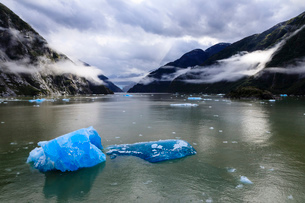 Spectacular Tracy Arm Fjord, brilliant blue icebergs and backlit clearing mist, mountains and Southの写真素材 [FYI03812614]