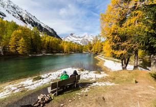 People on a bench on the shore of Lai da Palpuogna (Palpuognasee), Bergun, Albula Pass, Canton of Grの写真素材 [FYI03812625]