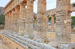 Columns of Temple of Segesta, Calatafimi, province of Trapani, Sicily, Italy, Europeの写真素材 [FYI03812822]