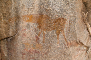 Ancient rock art of a painting depicting an animal, at Matobo National Park, Zimbabwe, Africaの写真素材 [FYI03812963]