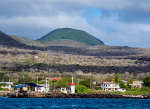 Puerto Velazco Ibarra, Floreana (Charles) Island, Galapagos, UNESCO World Heritage Site, Ecuador, Soの写真素材 [FYI03813141]