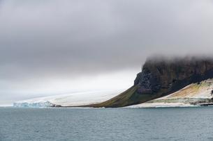 Massive bird cliff, Champ Island, Franz Josef Land archipelago, Arkhangelsk Oblast, Arctic, Russia,の写真素材 [FYI03813157]