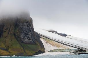Massive bird cliff, Champ Island, Franz Josef Land archipelago, Arkhangelsk Oblast, Arctic, Russia,の写真素材 [FYI03813159]