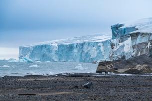Champ Island, Franz Josef Land archipelago, Arkhangelsk Oblast, Arctic, Russia, Europeの写真素材 [FYI03813162]
