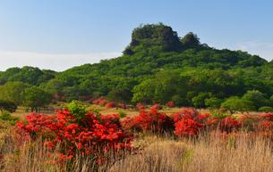 スルス岩と つつじ  (榛名山)の写真素材 [FYI03813291]