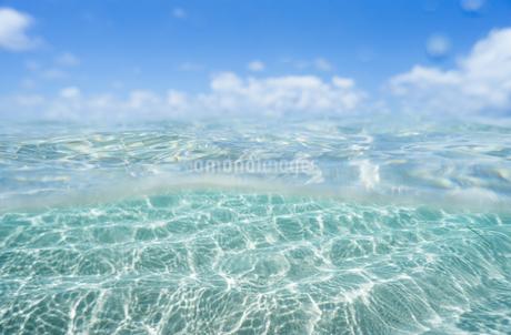 半水面の写真素材 [FYI03813532]