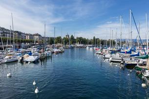 スイス、ジュネーブ旧市街とレマン湖の写真素材 [FYI03813548]