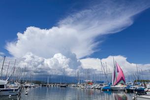 スイス、ジュネーブ、レマン湖の風景の写真素材 [FYI03813727]