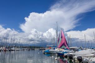 スイス、ジュネーブ、レマン湖の風景の写真素材 [FYI03813728]