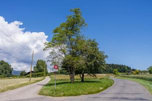 スイス、ジュネーブ郊外の風景の写真素材 [FYI03813799]