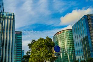 横浜みなとみらいのオフィス街と秋空の写真素材 [FYI03813869]