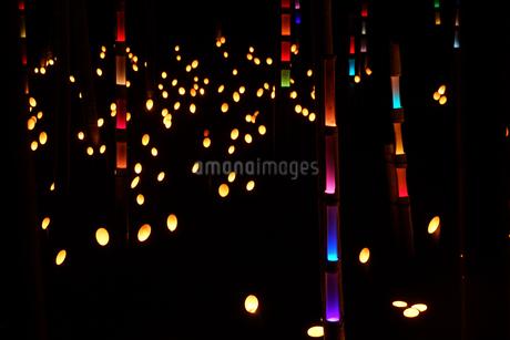 竹林の小径ライトアップ(小机城址市民の森)の写真素材 [FYI03813875]