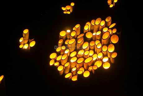竹林ライトアップ(小机城址市民の森)の写真素材 [FYI03814123]