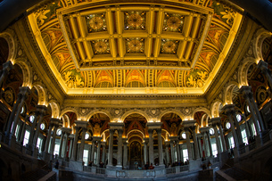 アメリカ合衆国議会議事堂(United States Capitol)の天井画の写真素材 [FYI03814161]