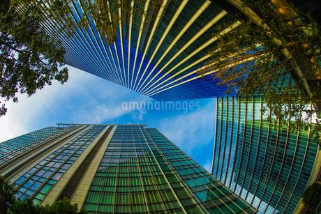 横浜みなとみらいのオフィス街と秋空の写真素材 [FYI03814215]