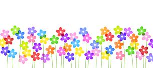 カラフルな花 ボーダー素材のイラスト素材 [FYI03814292]