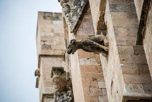 パルマ大聖堂の装飾「怪物・ガーゴイル」:マヨルカ島の写真素材 [FYI03814332]