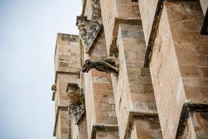 パルマ大聖堂の装飾「ガーゴイル」:マヨルカ島の写真素材 [FYI03814333]