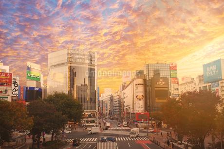 夕焼けの東京の写真素材 [FYI03814428]