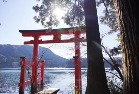 パワースポット 箱根神社の写真素材 [FYI03814601]