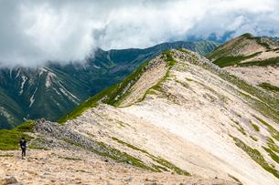北アルプス 赤牛岳 水晶岳から続く稜線の写真素材 [FYI03814731]