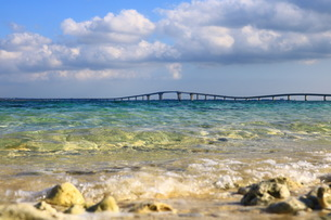 沖縄の海の写真素材 [FYI03814798]
