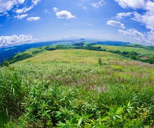 北海道 自然 風景 きじひき高原より函館市方面遠望 (魚眼)の写真素材 [FYI03814848]