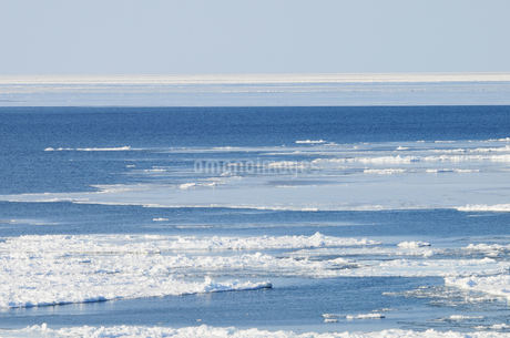 流氷が浮かぶ海の写真素材 [FYI03814934]