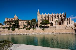 パルマ大聖堂とマル公園:スペイン・マヨルカ島の写真素材 [FYI03815019]