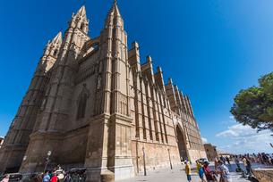 パルマ大聖堂:スペイン・マヨルカ島の写真素材 [FYI03815056]