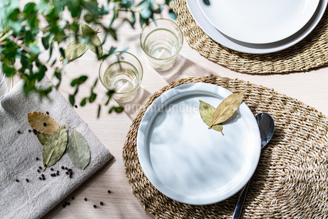 Table setting with empty plate in shining sunlightの写真素材 [FYI03815122]