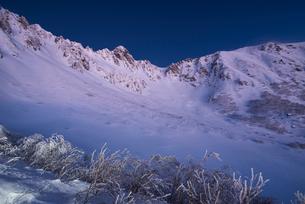 黎明と樹氷:厳冬の千畳敷カールと宝剣岳の写真素材 [FYI03815228]