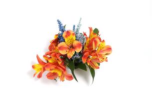 アルストロメリアとアスチルベの花束の写真素材 [FYI03815362]